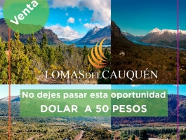 Do not miss this opportunity, WIN WHEN DOLLING !!! LAST LOTS WITH DOLLAR AT 50 PESOS