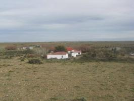 Great Farm in Santa Cruz