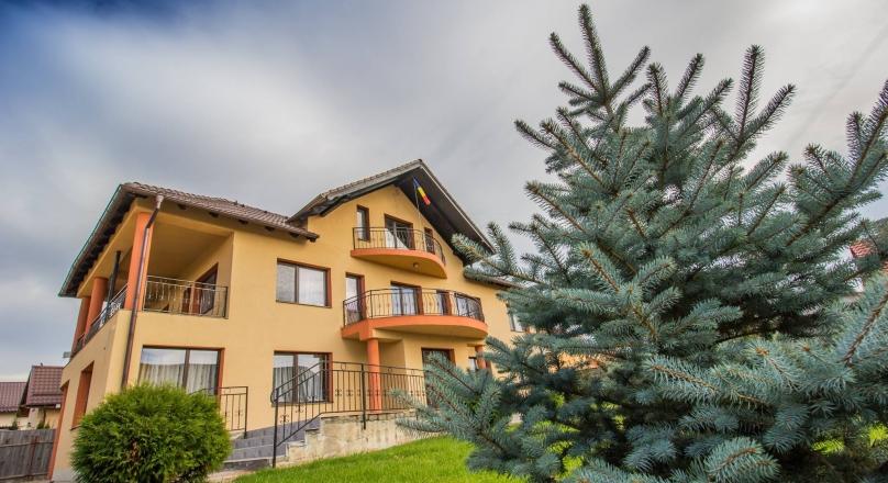 Villa Festive segment, fully furnished and equipped, 800 sqm, Sanpetru, Brasov