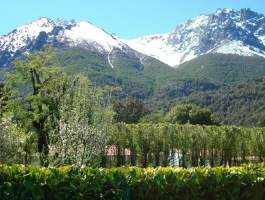 Beautiful 15 hectares in Bariloche, Province of Río Negro.