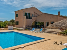 Bright villa with pool and private olive groves.
