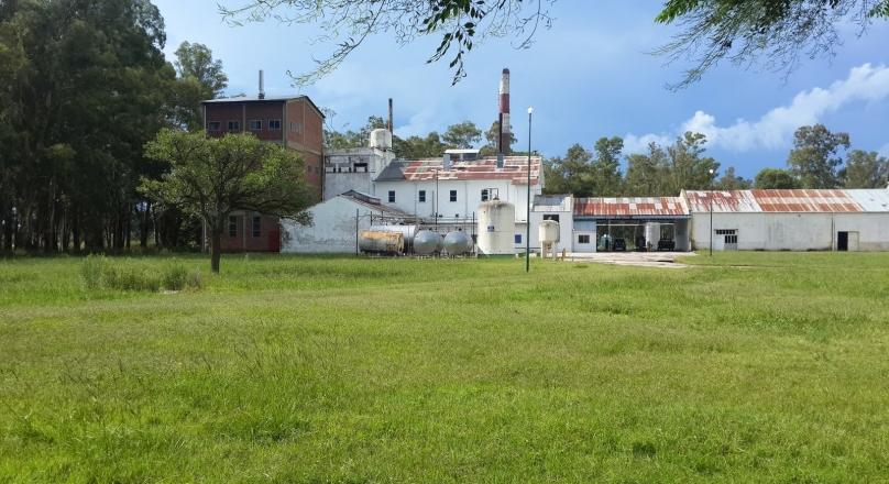 Importante fabrica láctea en Germania, Buenos Aires