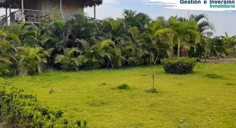 Sale of Hacienda Arrocera