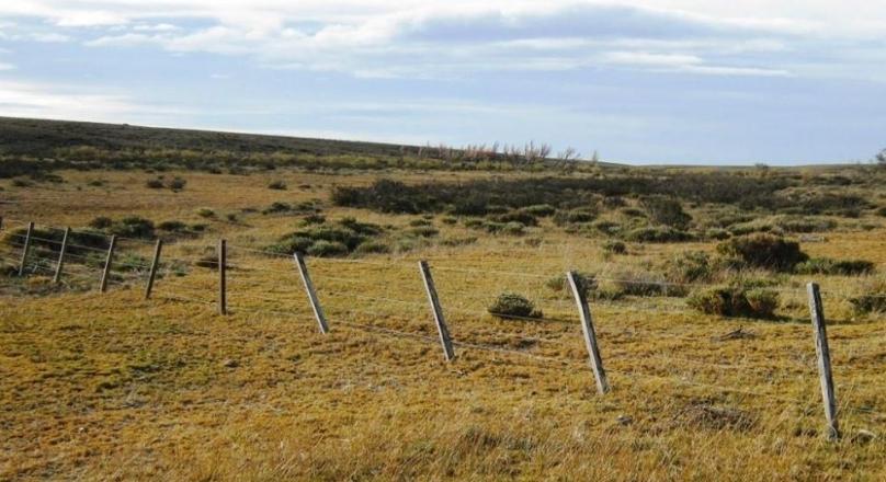Tres Cerros– Santa Cruz - 10,000 hectares