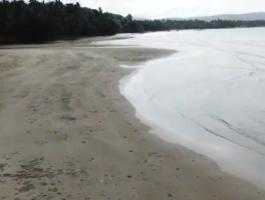 FOR SALE BEACH LAND @ WEST COAST ABORALAN PALAWAN