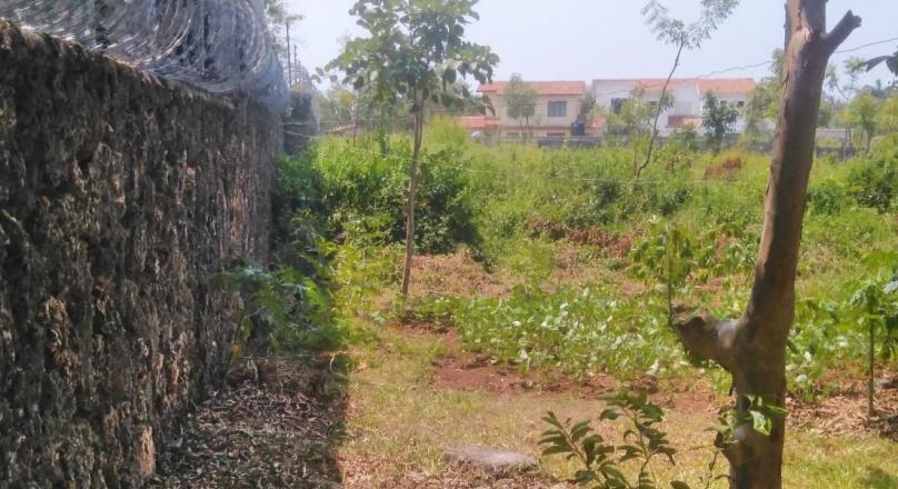 Half an acre corner Plot.