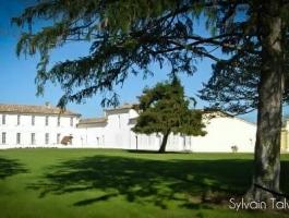 1782 Castle & Vineyard near Bordeaux