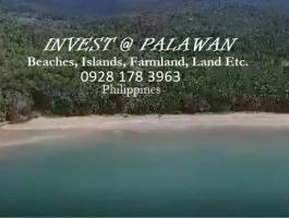 BEACH LOT FOR SALE @ WEST COAST PALAWAN