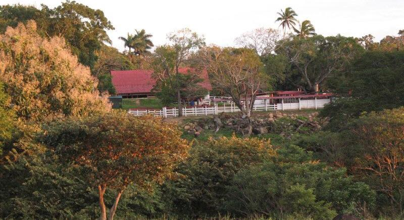LIVESTOCK FARM FOR SALE OF 4,460 HECTARES