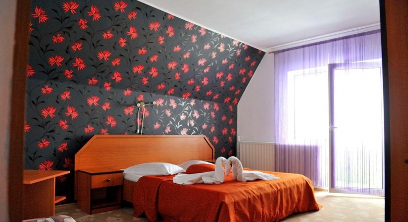 SEE VIDEO !! Romantic pensions, with business in progress, in the arms of nature, Predeal, Brasov
