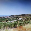FOR SALE LAND OF 31.000sq.m in N.Skionis Kassandra Halkidiki Greece