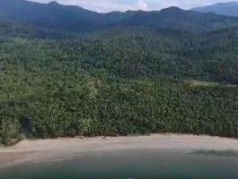 For Sale Beach Land @ West Coast Palawan