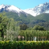 Beautiful 15 ha in Bariloche, Province of Río Negro